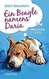 Ein Beagle namens Daria: Mein Hund & ich