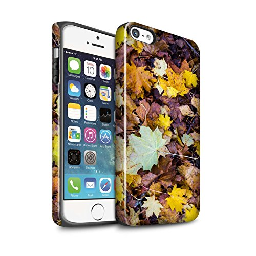STUFF4 Glanz Harten Stoßfest Hülle / Case für Apple iPhone 5/5S / Pack 5pcs / Herbst Saison Kollektion Laub
