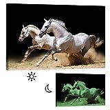 Wandbilder Startoshop, nachleuchtende Leinwandbilder oder Selbstklebende Fototapete, Pferde in Einer Staubwolke Wanddeko, 40 cm x 60 cm Vergleich