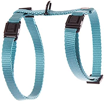 Martin Sellier Harnais Chat ou Petit Chien en Nylon Haute qualité réglable 35 à 50cm (Bleu)