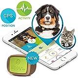 Kippy Vita - GPS y Monitor de Actividad para gatos y perros - Localizador GPS para perros y otros animales - Green Eye