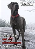 INDIGOS UG - Türschild FunSchild - SE436 - ACHTUNG Hund Deutsche Dogge - für Käfig, Zwinger, Haustier, Tür, Tier, Aquarium - DIN A4 PVC 3mm stabil