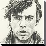 1art1 78835 Star Wars - Luke Skywalker Portrait Zeichnung Poster Leinwandbild Auf Keilrahmen 30 x 30 cm