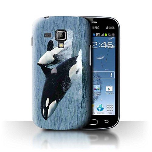 Stuff4 Hülle / Case für Samsung Galaxy S Duos 2/S7582 / Schwertwal/Orca Muster / Marine Tierwelt Kollektion (Orca-duo)