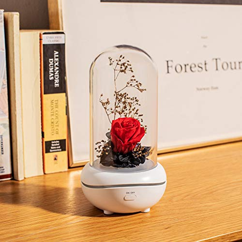 Eliasan Ewige Blume led Flasche Lampe duft Lampe Romantisches Aroma Rose Lampe nachtlicht Geschenk für Hochzeit Muttertag Geburtstag rot -