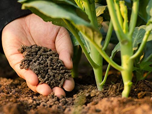 Creative Farmer Vermi Compost for Plants Protects Plant Roots from Nematodes, Soil Grubs and White Ants