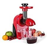 Klarstein Fruitpresso Rosso Multifunktions-Entsafter elektrisch Saftpresse 150W Saftmaschine