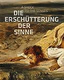 Die Erschütterung der Sinne: Constable, Delacroix, Friedrich, Goya -