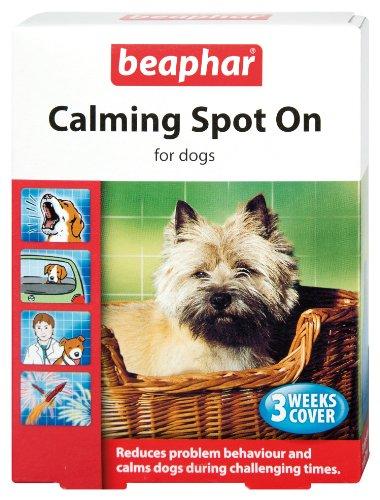Beaphar Calming Spot On Beruhigungsmittel für Hunde, reduziert Verhaltensprobleme, beruhigt, 3-Wochen-Packung