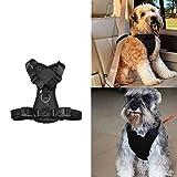 Universell passendes Hundegeschirr als Sicherheitsgurt für das Auto, verstellbar und gepolstert, für kleine und mittelgroße Hunderassen