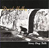 Stray Dog Talk
