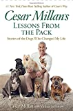 #8: Cesar Millan's Lessons From the Pack: Stories of the Dogs Who Changed My Life