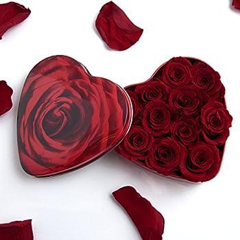 rosenherz konservierte rosen haltbar 3 jahre blumen. Black Bedroom Furniture Sets. Home Design Ideas