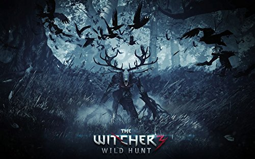 The Witcher 3 Wild Hunt (38x24 inch / 96x60 cm) Silk Print Poster Seide Plakat - Silk Printing - D4EBD9 -
