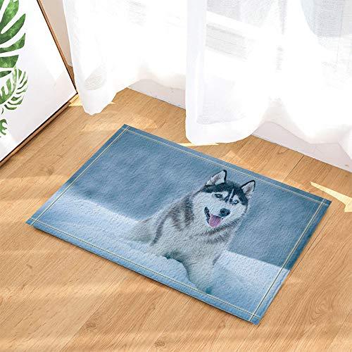 SRJ2018 Un Perro Esquimal Siberiano Que se asemeja