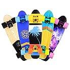 BAYTTER® 22 Zoll Skateboard Komplett Board Mini-Cruiser aus 7-lagigem Ahornholz 57 x 15cm für Kinder, Jugendliche und Erwachsene mit ABEC-7 Kugellager und 95A Rollenhärte, 5 Farben wählbar