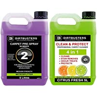 Dirtbusters 4LN 1Clean & Protect concentrato 1x