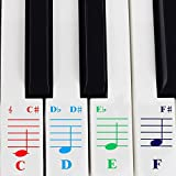 QMG Color Piano Stickers for 49/61/ 76/88 Key Keyboards - Transparent and Removable: Made in USA
