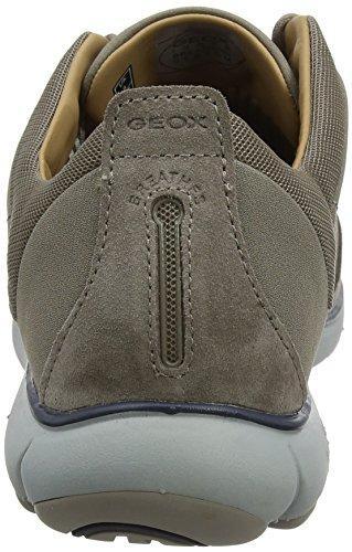 Geox U Nebula C, Sneakers Basses Homme Beige (Taupe)
