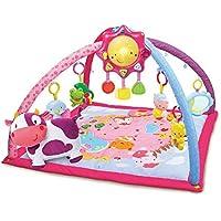 VTech Baby - Manta convertible en gimnasio, color rosa (3480-146457)