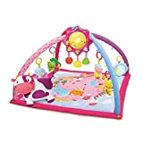 VTech Baby - Decke Convertible in Fitnesscenter Rosa