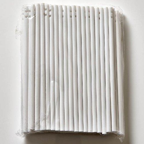 Bastoncini Per Alimenti Da 100 x 114mm In Plastica Bianca Per Cioccolatini, Cake Pops e Ghiaccioli