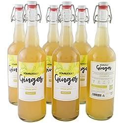 Kombucha Premium: 6 ud Te de Kombucha Ginger (jengibre y manzana) - 750ml