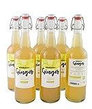 Caja 6 unidades de Te de Kombucha Premium: 6 ud Te de Kombucha Ginger (jengibre y manzana) - 750ml
