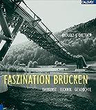 Image de Faszination Brücken: Baukunst, Technik, Geschichte
