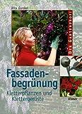 Fassadenbegrünung: Kletterpflanzen und Klettergerüste