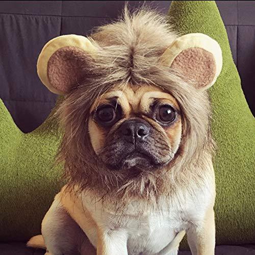 MUJUZE Löwenmähne für Katzen, Löwe Mähne Perücke Kostüm für Kleine Hunde, Kätzchen, Kleine Slim Haustiere, Festival Party Fancy Hair Kleidung für Welpe