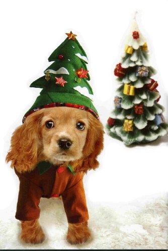 Dogs & Co. Cani & Co costumes-costume per cani di Natale, albero di Natale, 50,8cm/50cm