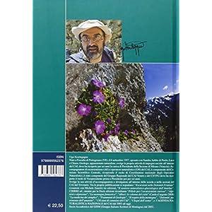 Ambiente alpino. Vegetazione e fauna delle montagne italiane
