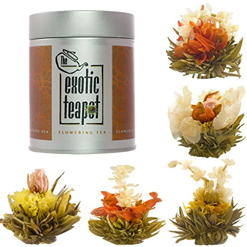 The Exotic Teapot - Flowering Tea Sampler Tin, 5 Different Varieties of Blooming Tea, Vacuum Sealed Tea Balls, Jasmine Tea Flowers