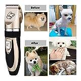 Zetong Tech Profi Keramik Schermaschine mit Zubehör Wiederaufladbare Tierhaarschneider Haustiere Elektrische Haarschneidemaschine für Hunde,Katze Gold - 9