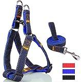 Einstellbare Cowboy-Hundegeschirr mit Leine Hundeleine Haustier-Bügel-Seil-Kette (Blue)