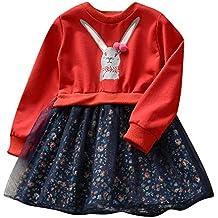 78ad27fe2 ASHOP Vestidos niña Vestido Floral Conejo De Dibujos Animados Tutu Falda  Princesa