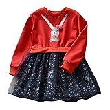 K-youth Vestidos Niña, Bebé Niña Conejito De Dibujos Animados Vestido De Princesa Floral Ropa Niña Vestido de Princesa Infantil Elegante Bautizo Ceremonia Niña en Oferta(Rojo, 5-6 años)