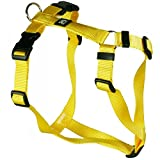 Feltmann Hundegeschirr - Nylonband, Unifarben Gelb, Bauchumfang 60-80 cm, 25 mm Bandbreite