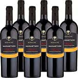 Primitivo di Manduria DOC Sangaetano | Cantina due Palme | I Vini della Puglia | Confezione da 6 Bottiglie da 75 Cl | Idea Regalo