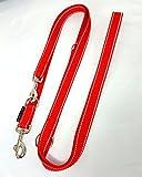 elropet Hundeleine Doppelleine Gurtband reflektierend 25mm 3,50m rot 4fach verstellbar für große und kräftige Hunde