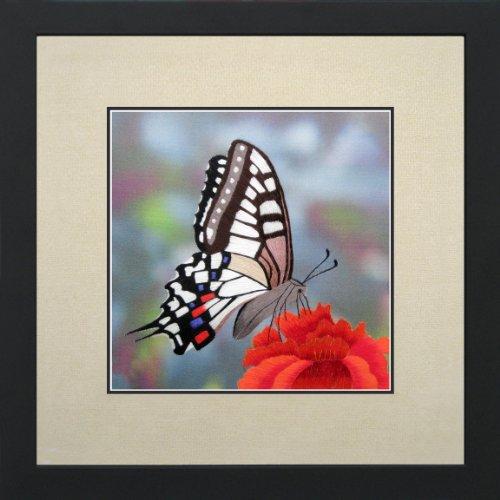 andgefertigt Stickerei mehrere Colorful Butterfly Oriental Wand hängende Dekoration Art asiatischen Tapisserie Artwork Bild Geschenke 33024 Off White Matt with Black Frame B1 33013 ()