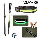 Luminous Pet Halsband Pet Halsband Glowing Flashing reflektierendes Licht Hundehalsband Nylon Luminous Sicherheit Halsband für Nacht Walking Band mit USB wiederaufladbar oder Solar Ladegerät verstellbar