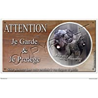 Targa Cane o, Bouvier Des Flandres–02[in lingua francese] 20 par 10 cm