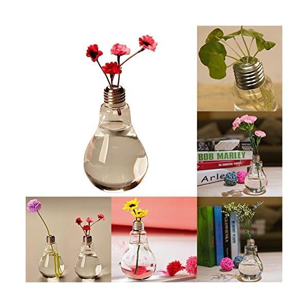 Gespout 1pcs Bombilla Clara Forma de la Mesa de Vidrio Chuchería Planta Florero de Cristal de Vidrio Envase Hidropónico…