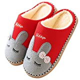 Pastaza Inverno Pantofole Home Morbido Peluche Pantofole Comode e Calde Pantofole Coppie Scarpe da Casa per Donne Uomo Rosso,35