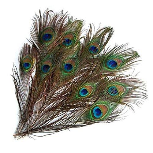 Feder Schwanz Kostüm - Lorsoul Natürlicher Vogel Schwanz Zierfedern, 25-30cm, für Kostüm