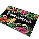 AMDXD Flanell Teppich Französisch Welcome Design Teppiche für Schlafzimmer Wohnzimmer Bunt 90x60CM