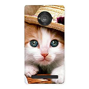 Special Cute Kitty Hat Multicolor Back Case Cover for Yu Yuphoria