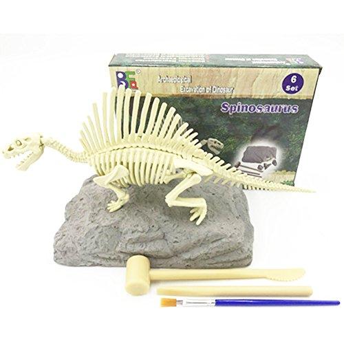 Newin Star Dinosaurier Skelette, Ausgrabungsset Dinosaurier Entdeckung Spielzeug mit Werkzeug 3D Dino Pädagogisches Konstruktionsspielzeug für Kinder (Spinosaurus)
